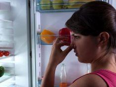Пять подручных средств, которые помогут быстро устранить неприятный запах из холодильника