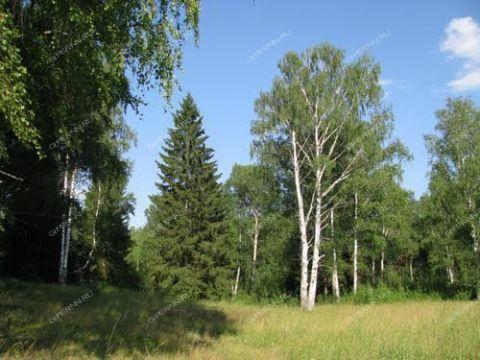selo-kosheliha-gorodskoy-okrug-pervomaysk фото