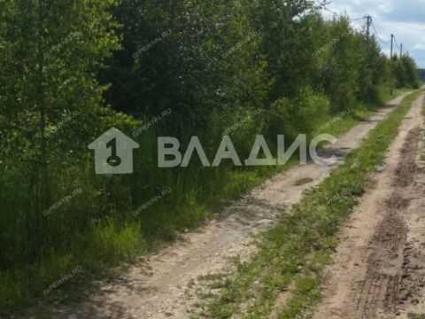 derevnya-zaozere-bogorodskiy-municipalnyy-okrug фото