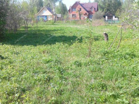 derevnya-vypolzovo-bogorodskiy-rayon фото
