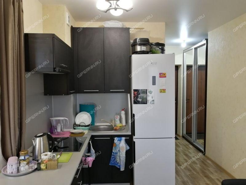 однокомнатная квартира на улице Васильковая дом 161А к1 деревня Кусаковка