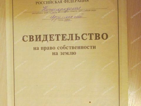 selo-chernuha-arzamasskiy-rayon фото