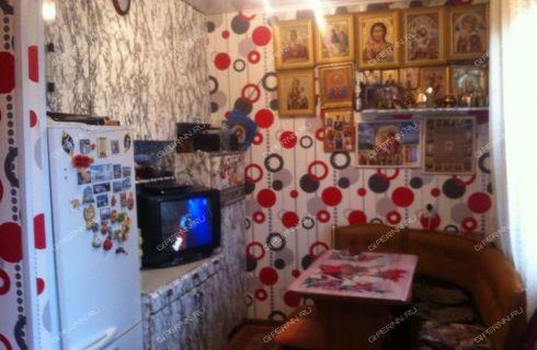 2-komnatnaya-derevnya-malinovka-kstovskiy-rayon фото